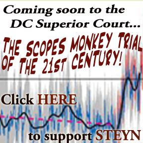 steyn monkey trial